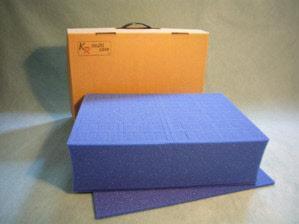 V1 Card Case