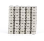 Rare Earth Magnets (4mm x 2mm) (x1)