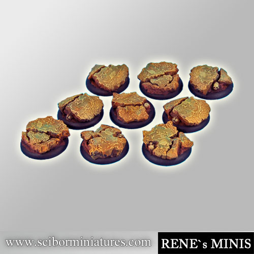Royal Lions Ruins roundedge Bases 30mm #2