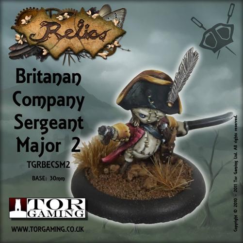 Britanan Company Sergeant Major 2