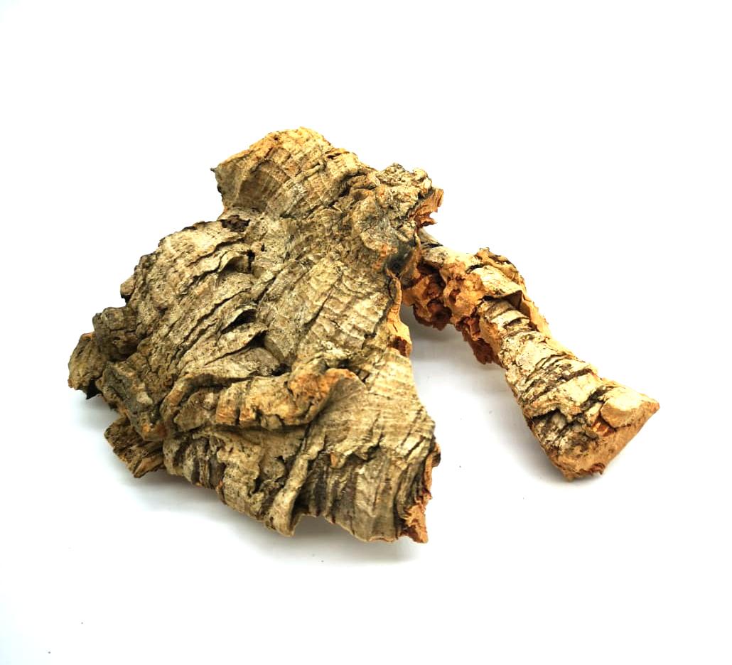 Element Essentials: Cork Bark