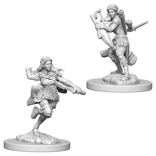 Air Genasi Female Rogue: D&D Nolzur's Marvelous Unpainted Miniatures (W4)
