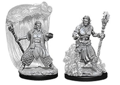 Water Genasi Male Druid: D&D Nolzur's Marvelous Unpainted Miniatures (W5)