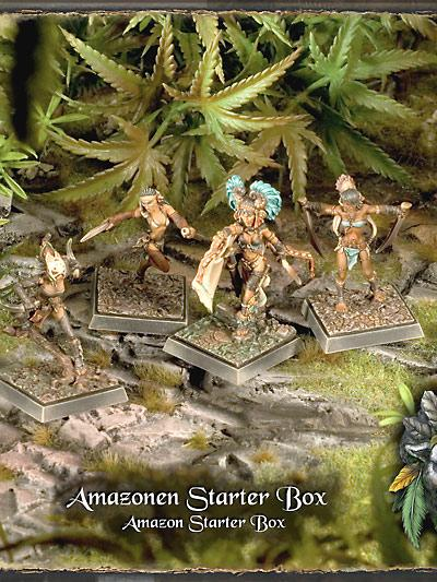 Starterbox Amazon