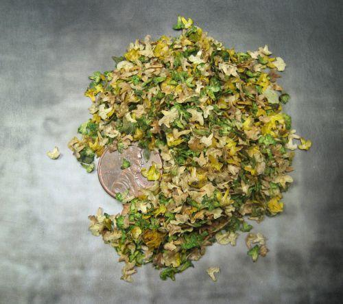 Masterclass Scenics: Fallen Leaves - Summer Color mix