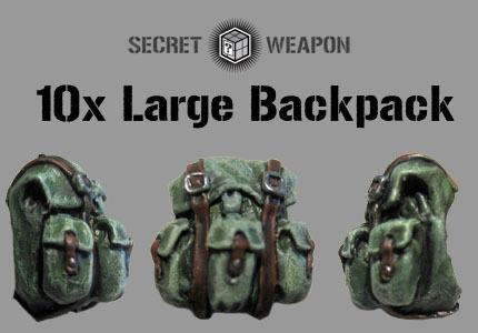 (10) Large Backpacks