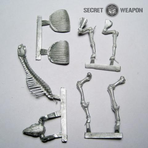 Buffalo Skeleton (1)