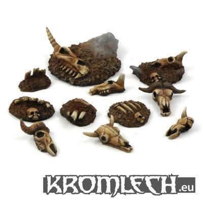 Animal skulls & bones (11) (TBA)
